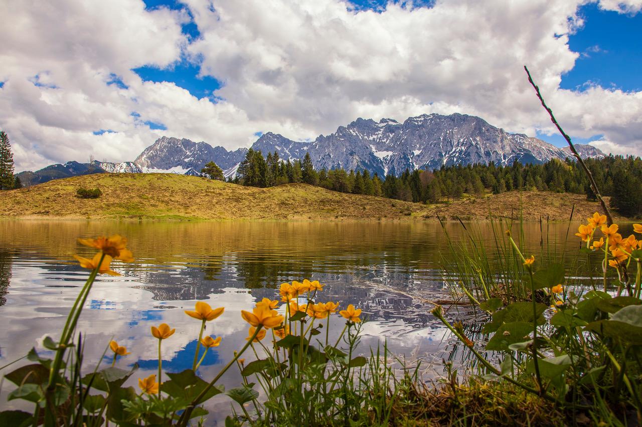 Wildensee im Frühling