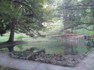 Kurpark in Mittenwald