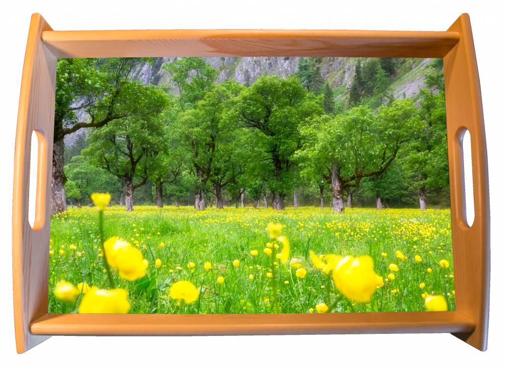 Tablett mit Motiv der Trollblumen am Ahornboden