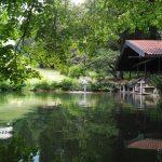 Im Krausegarten