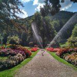 Der Krausegarten in Mittenwald