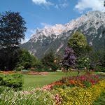 Blühender Krausegarten